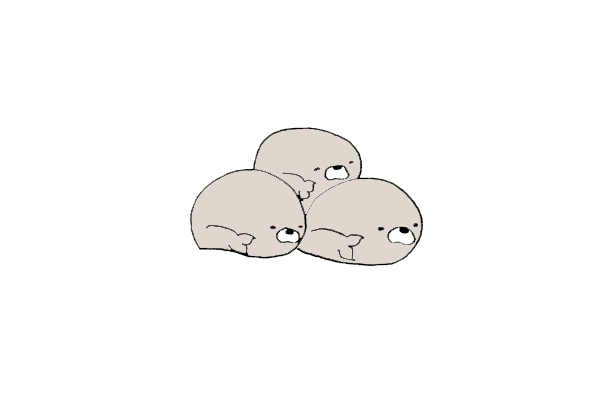 Seal Squad