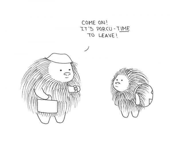 On Time Porcupine