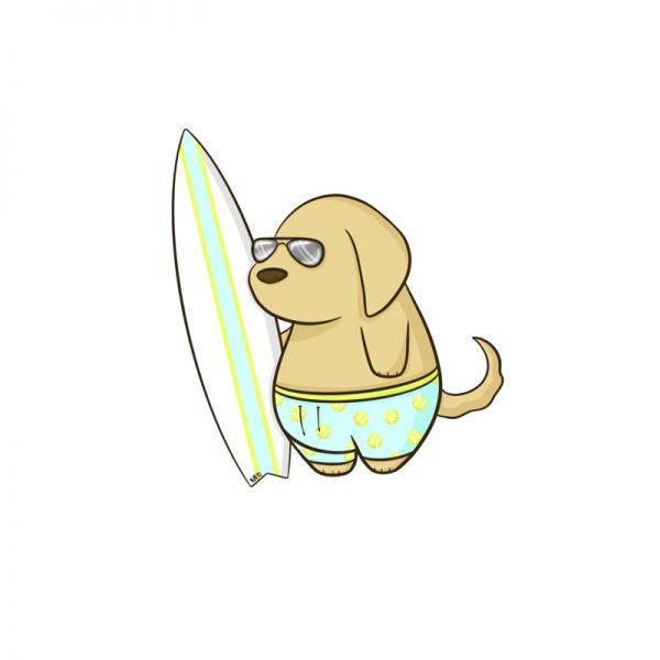 Surf Seeker